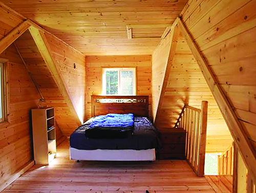 Knotty Pine Cabin interior.