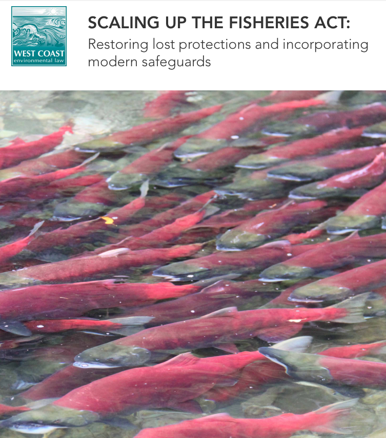 Scaling Up The Fisheries Act